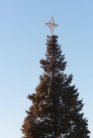 クリスマスツリーのスター